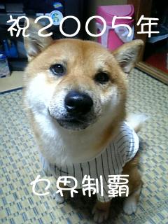 0929_M.jpg